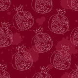 Vector pomegrante pattern. Vector seamless pattern with pomegrante, vector background with fruits Stock Photography