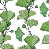 Vector Ponga verde la hoja del ginkgo Modelo inconsútil del fondo Textura de la impresión del papel pintado de la tela en el fond ilustración del vector