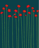 Vector poppy Stock Photography