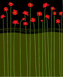 Vector poppy Royalty Free Stock Photo