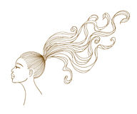 Vector portrait of a black girl with long hair. Royalty Free Stock Photo