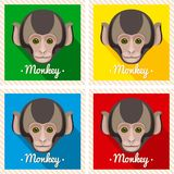 Vector portrait of a cute monkey. Symmetrical portraits of animals. Vector Illustration, greeting card, poster. Icon. Animal face. Stock Images