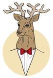 Vector portrait of deer. Portrait of a deer in a circle Stock Photos