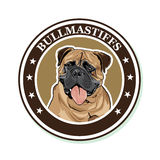 Vector portrait of the dog breed Bullmastiff Stock Photography