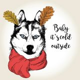 Vector portrait of dog in scarf and leaf ears. Hand drawn dog illustration. Baby it s cold outside. Royalty Free Stock Image