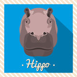 Vector portrait of a hippopotamus, hippo. Symmetrical portraits of animals. Vector Illustration, greeting card, poster. Icon. Stock Photography