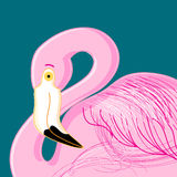 Vector portrait of pink flamingos Royalty Free Stock Images