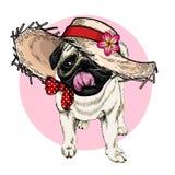 Vector portrait of pug dog wearing straw hat, flower and polka dot bandana. Summer fashion cartoon illustration. Hand. Drawn pet portait. Poster, t-shirt print vector illustration