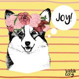 Vector portrait of welsh corgi, wearing flower wreath. Hand drawn pet dog illustration. on yellow background. Vector close up portrait of welsh corgi pembroke royalty free illustration