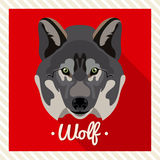 Vector portrait of a wolf. Symmetrical portraits of animals. Vector Illustration, greeting card, poster. Icon. Animal face. Stock Photo