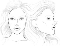 Vector portrait of a woman`s profile and full face with long beautiful hair, facechart, face chart  for makeup Stock Photography
