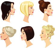Vector portraits of women in profile, blonde, brunette hair, beauty face Royalty Free Stock Image