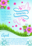 Vector poster for April spring holidays Royalty Free Stock Photography