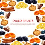 Vector poster of dried fruits and dry fruit snacks. Dried fruits poster of sweet dry fruit snacks. Vector raisins, prunes or dried apricots, dates or figs and Stock Photo