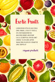 Vector poster of exotic fresh tropical fruits Royalty Free Stock Photos