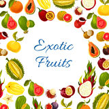 Vector poster of exotic fresh tropical fruits Royalty Free Stock Image