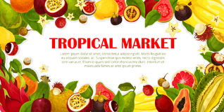 Vector poster of exotic fruits for tropical market Royalty Free Stock Photo