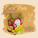 Vector poster of exotic tropical fruits Royalty Free Stock Image