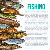 Vector poster for fishing or sea fish product. Fishing vector poster with information of sea and ocean fish food products. Seafood design of fishes catch salmon Stock Images