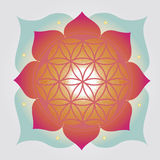 Flower of Life  design Royalty Free Stock Images