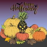 Vector poster for Halloween. Pineapple jack-o-lantern with set of pumpkins. Use for party or greeting card. Stock Images