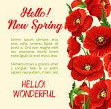 Vector poster of poppy flowers Hello Spring quote Stock Photos