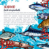 Vector poster for seafood or fish food products. Seafood and fish food products posters template for fish and sea food market. Vector design of fresh marlin Royalty Free Stock Images