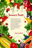 Vector poster summer berries and tropical fruits Stock Image