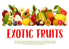 Vector poster for tropical exotic fruits Royalty Free Stock Images