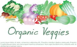 Vector poster of vegetables or veggies harvest - Illustration stock illustration