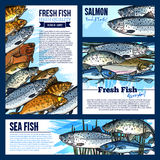 Vector posters or banners for fresh fish market. Fresh fish posters and banners set for fish food and seafood market. Vector template design of sea fishing big Royalty Free Stock Images