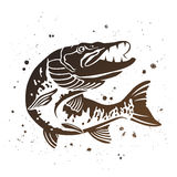 Vector Predatory pike. The stylized image of fish.