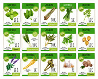 Vector price cards set for spices and herbs Royalty Free Stock Image