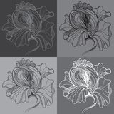 Vector print with four graphic monochrome flowers Royalty Free Stock Photos
