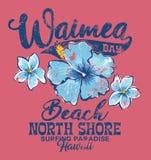 North Shore Waimea bay surfing paradise Royalty Free Stock Photos