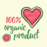 Vector print with watermelon and lettering. Typographic printable banner for summer design. Stock Photography