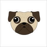 Vector of a Pugs Face Stock Photos