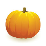 Vector pumpkin Royalty Free Stock Image