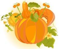 Vector pumpkin city Royalty Free Stock Photos