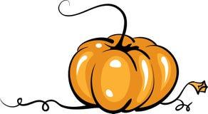 Vector pumpkin Stock Images