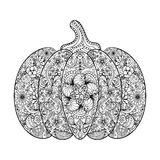 Vector Pumpkin illustration, Hand drawn vegetable in zentangle s Stock Photo