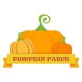 Vector pumpkin patch royalty free illustration