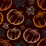 Vector pumpkin seamless background. Royalty Free Stock Photography