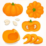 Vector pumpkin. Sliced, whole, half pumpkin. royalty free illustration