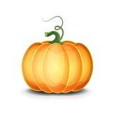 Vector Pumpkin Royalty Free Stock Photo