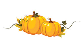 Vector pumpkins Royalty Free Stock Photos