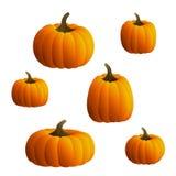 Vector Pumpkins Set vector illustration