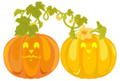 Vector pumpkins sweethearts Royalty Free Stock Image