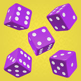 Vector purple dice set Stock Photos
