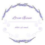 Vector purple floral frame. Flower illustration Stock Image